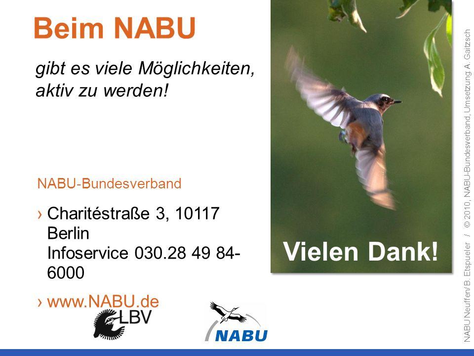 Beim NABU Vielen Dank! gibt es viele Möglichkeiten, aktiv zu werden!