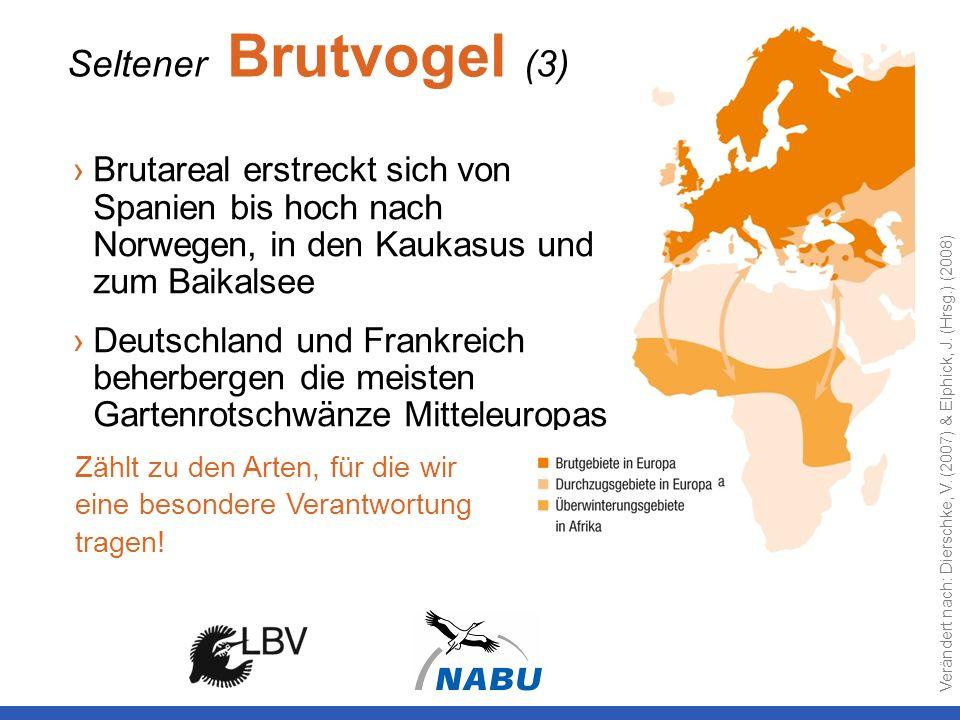 Seltener Brutvogel (3) Brutareal erstreckt sich von Spanien bis hoch nach Norwegen, in den Kaukasus und zum Baikalsee.