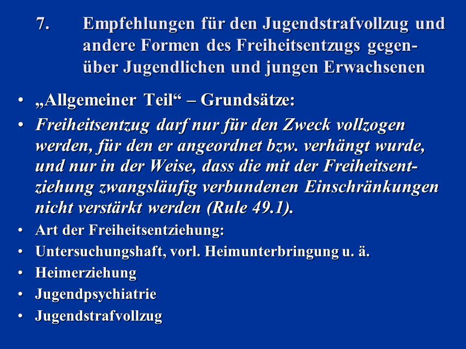 """""""Allgemeiner Teil – Grundsätze:"""