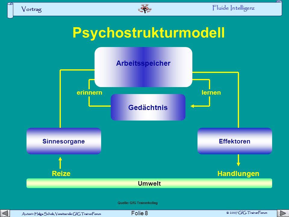 Psychostrukturmodell