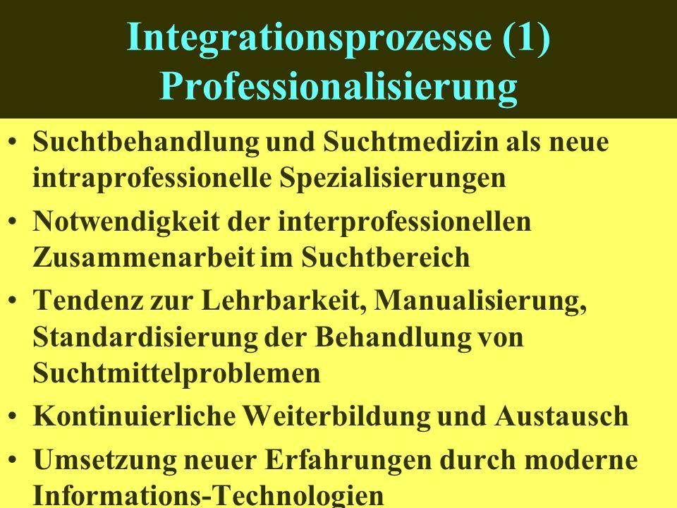 Integrationsprozesse (1) Professionalisierung