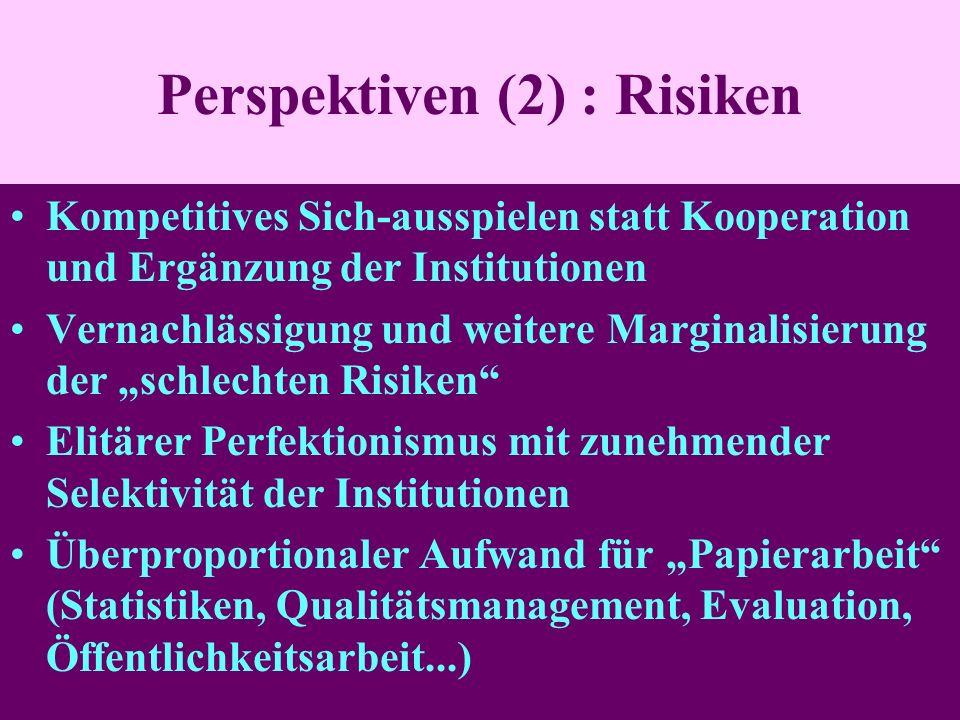 Perspektiven (2) : Risiken