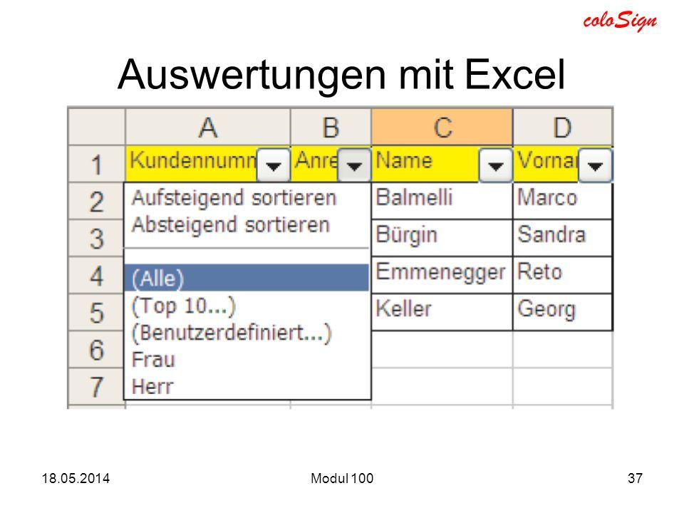 Auswertungen mit Excel