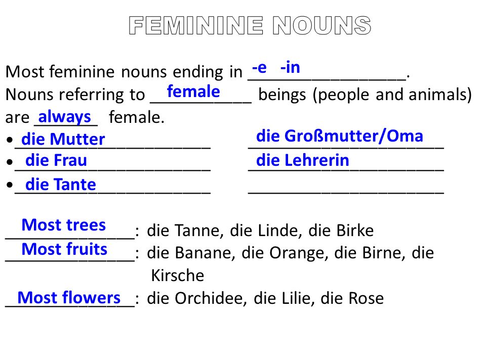 FEMININE NOUNS -e -in Most feminine nouns ending in _________________.