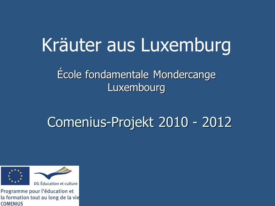 École fondamentale Mondercange Luxembourg