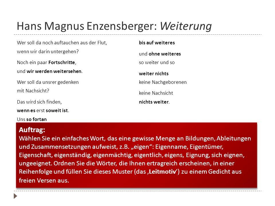 Hans Magnus Enzensberger: Weiterung