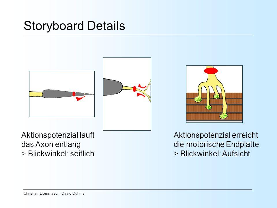 Storyboard Details Aktionspotenzial läuft das Axon entlang