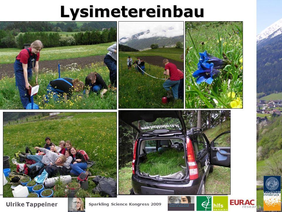 Lysimetereinbau