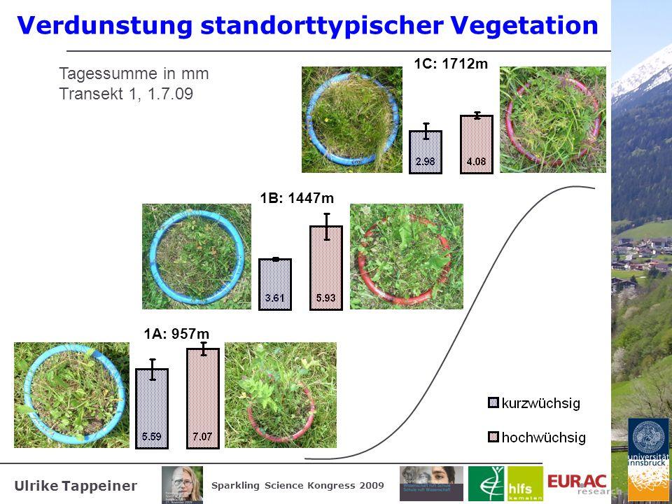 Verdunstung standorttypischer Vegetation