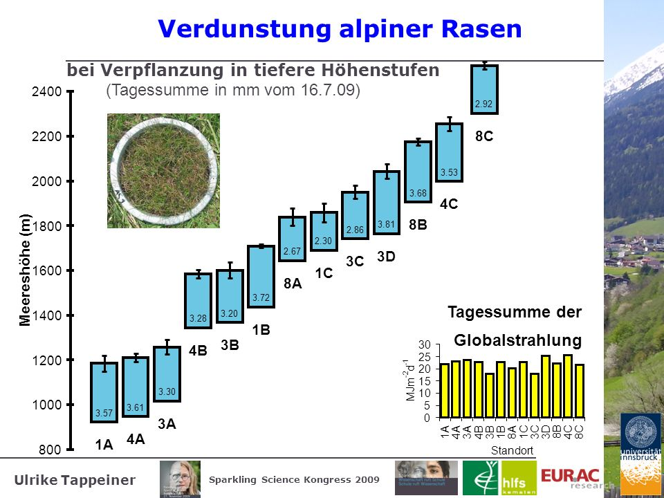Verdunstung alpiner Rasen
