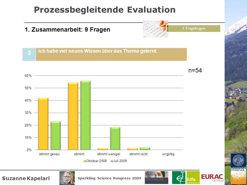 Prozessbegleitende Evaluation