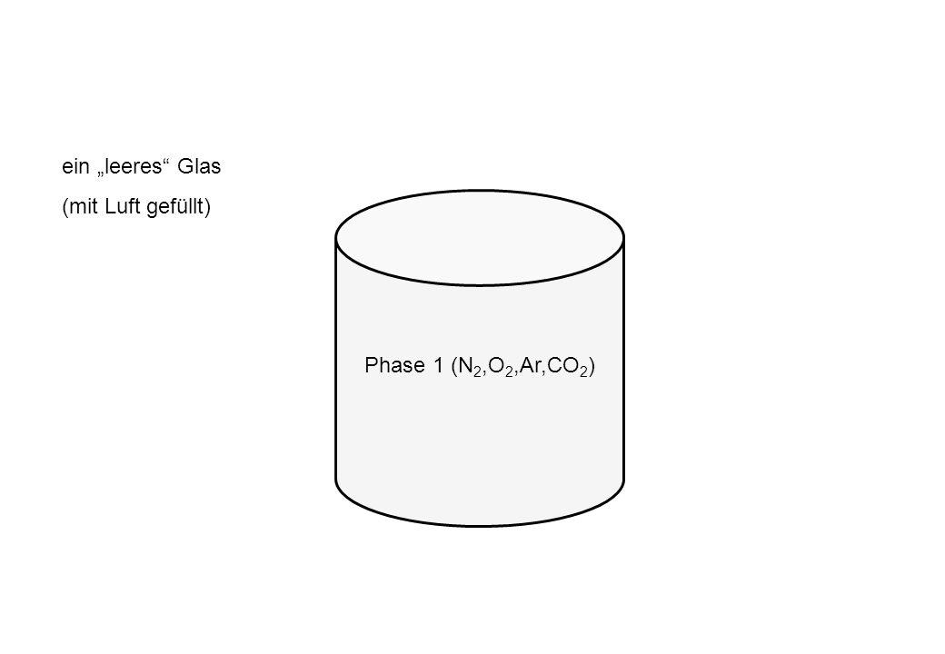 """ein """"leeres Glas (mit Luft gefüllt) Phase 1 (N2,O2,Ar,CO2)"""