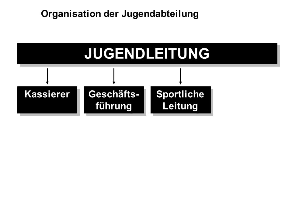 JUGENDLEITUNG Organisation der Jugendabteilung Kassierer