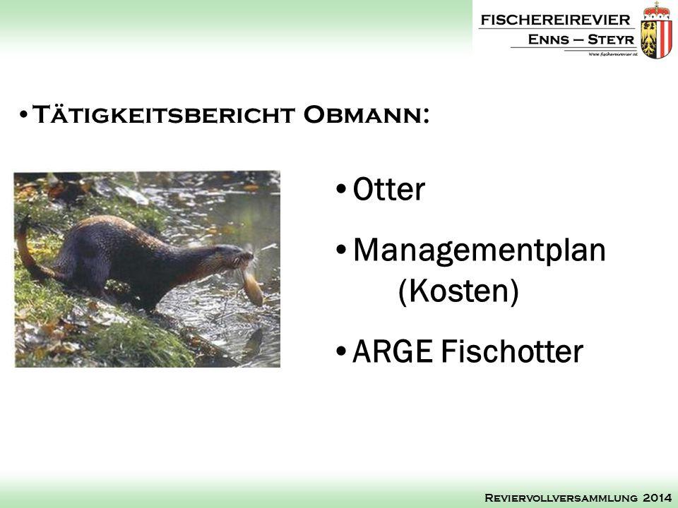 Managementplan (Kosten)