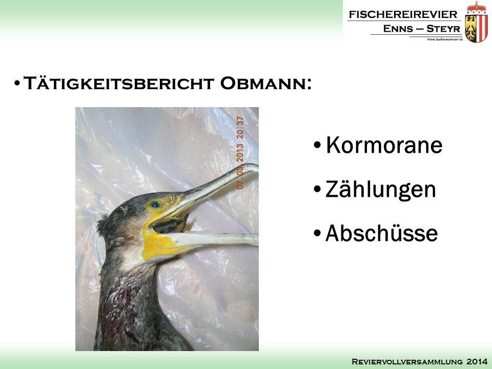 Kormorane Zählungen Abschüsse Tätigkeitsbericht Obmann: