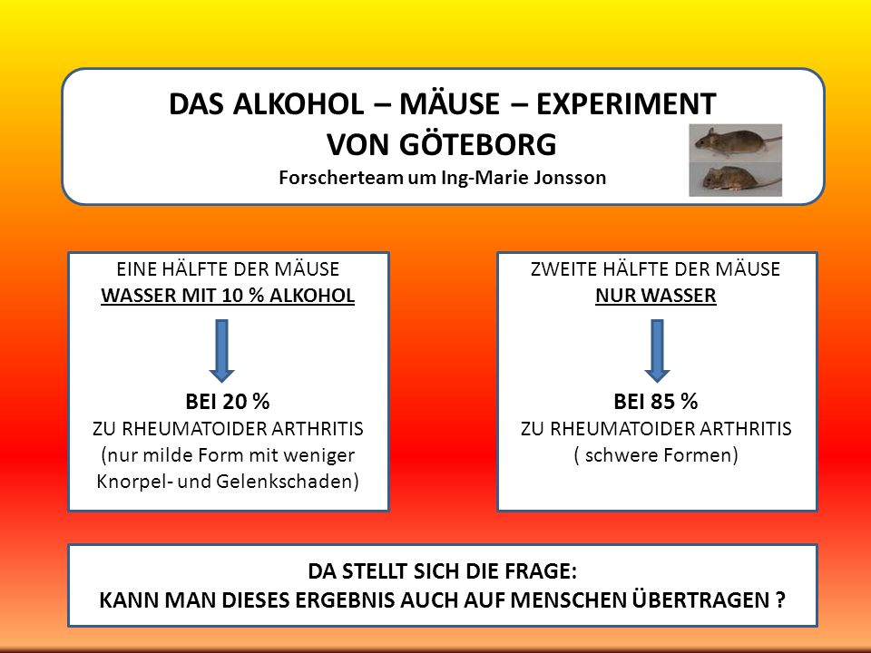 DAS ALKOHOL – MÄUSE – EXPERIMENT VON GÖTEBORG