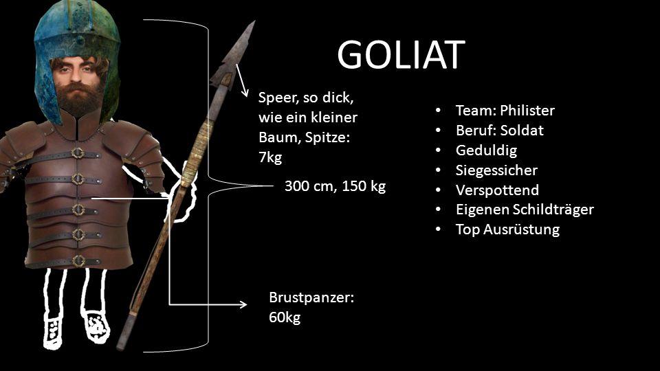 GOLIAT Speer, so dick, wie ein kleiner Baum, Spitze: 7kg