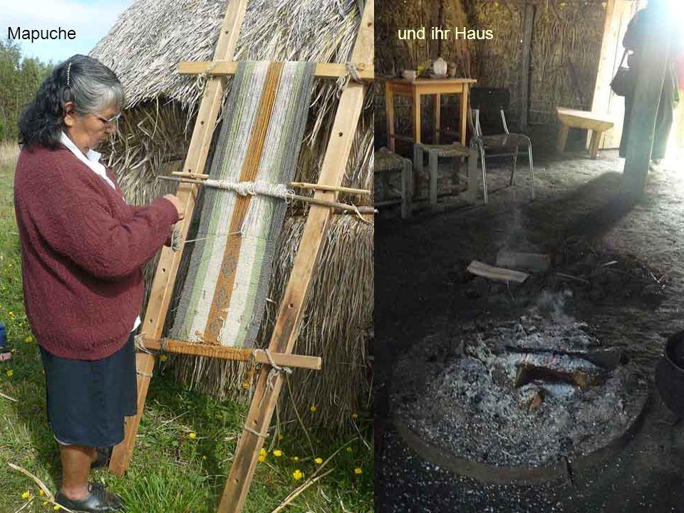 Mapuche und ihr Haus