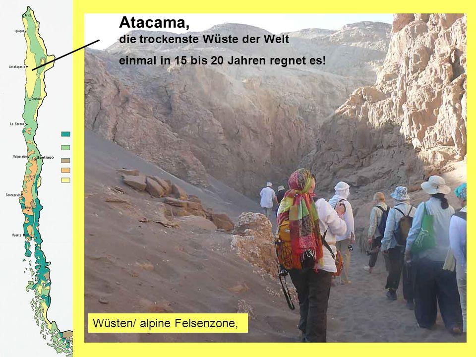 Atacama, die trockenste Wüste der Welt