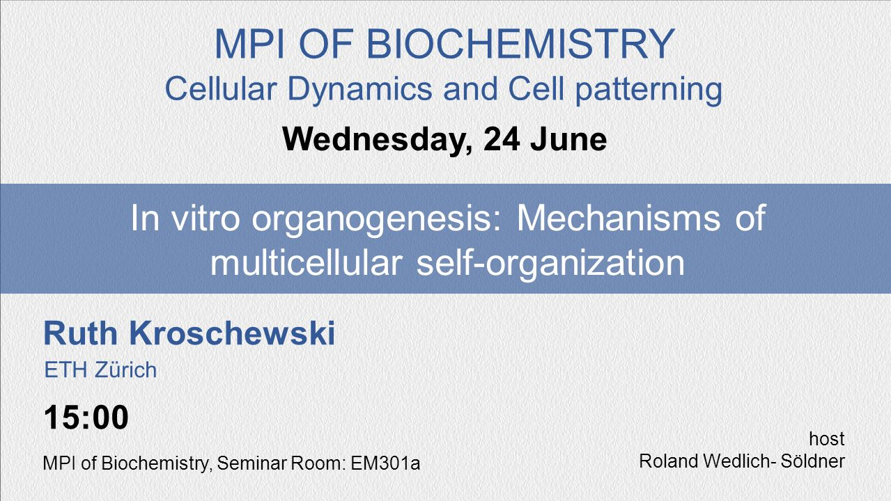MPI OF BIOCHEMISTRY Cellular Dynamics and Cell patterning