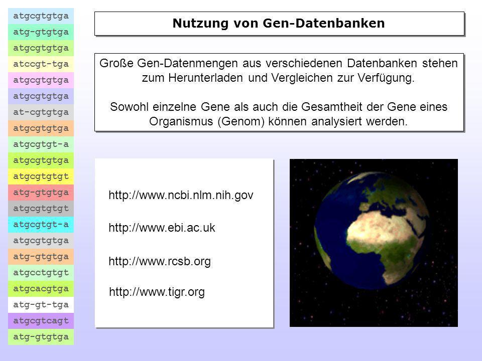 Nutzung von Gen-Datenbanken