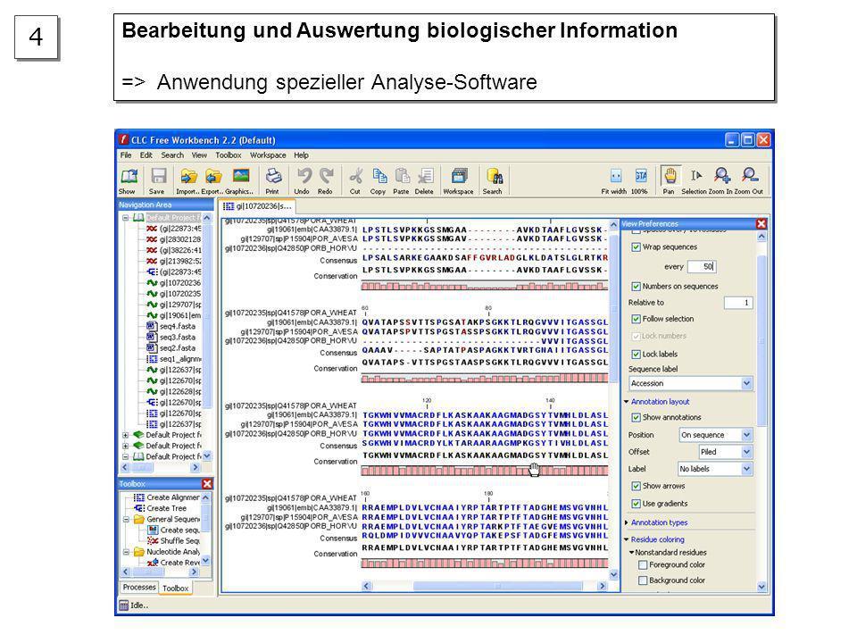 4 Bearbeitung und Auswertung biologischer Information