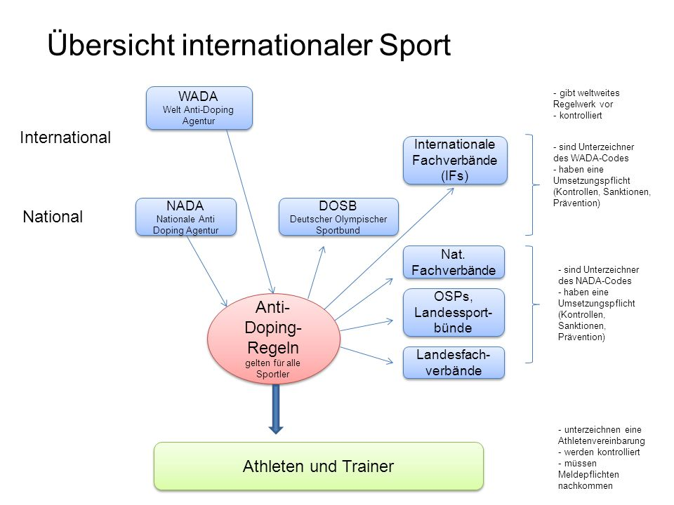 Übersicht internationaler Sport