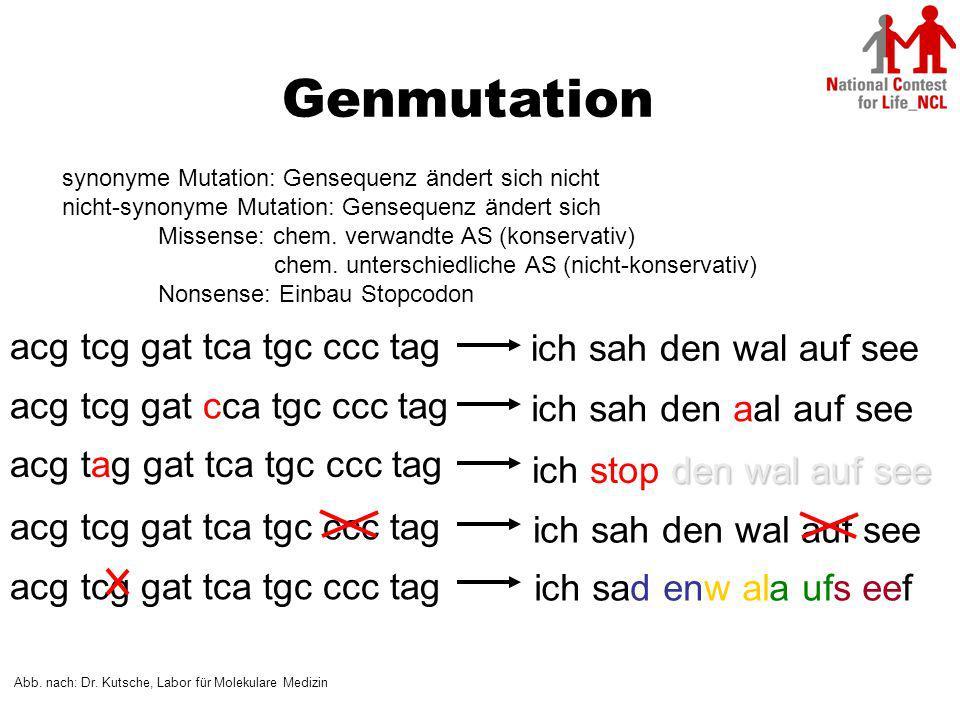 Genmutation acg tcg gat tca tgc ccc tag ich sah den wal auf see
