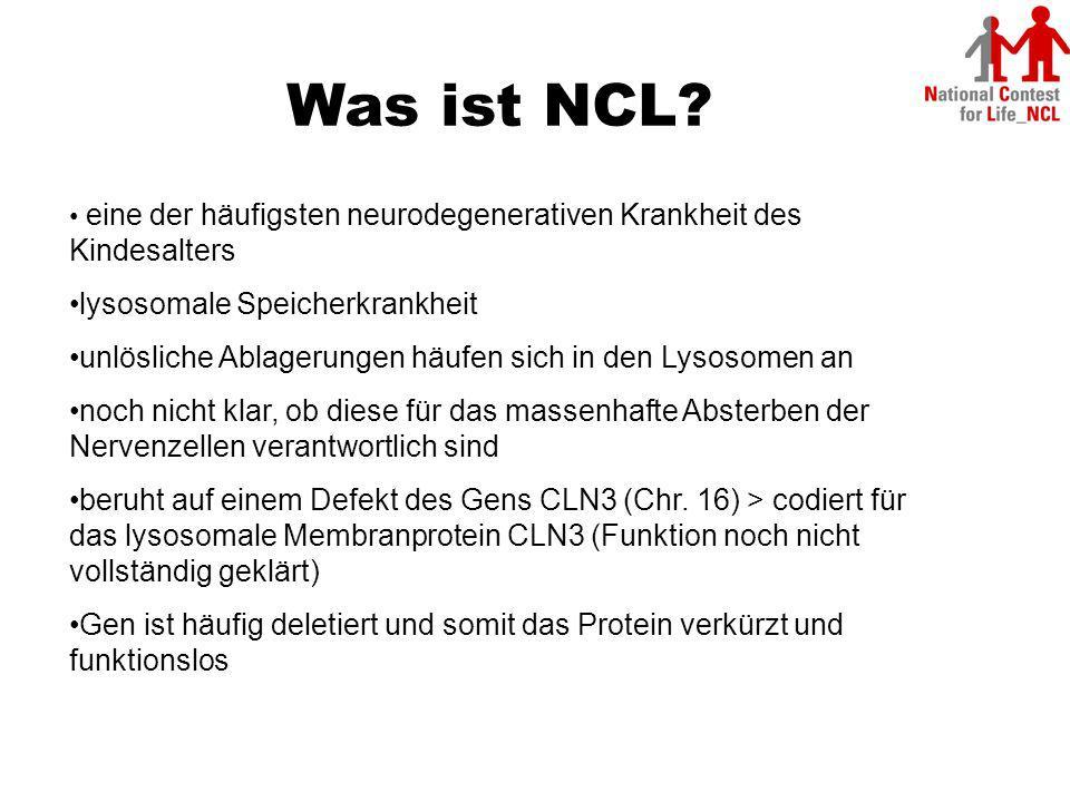 Was ist NCL lysosomale Speicherkrankheit