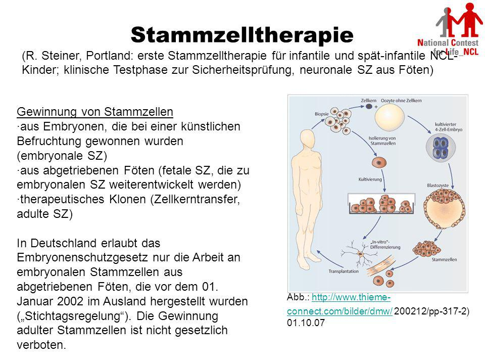Adulte und embryonale stammzellen