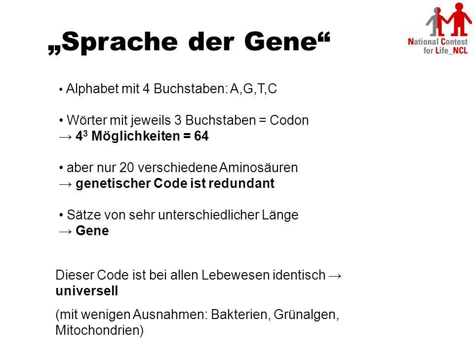 """""""Sprache der Gene Wörter mit jeweils 3 Buchstaben = Codon"""