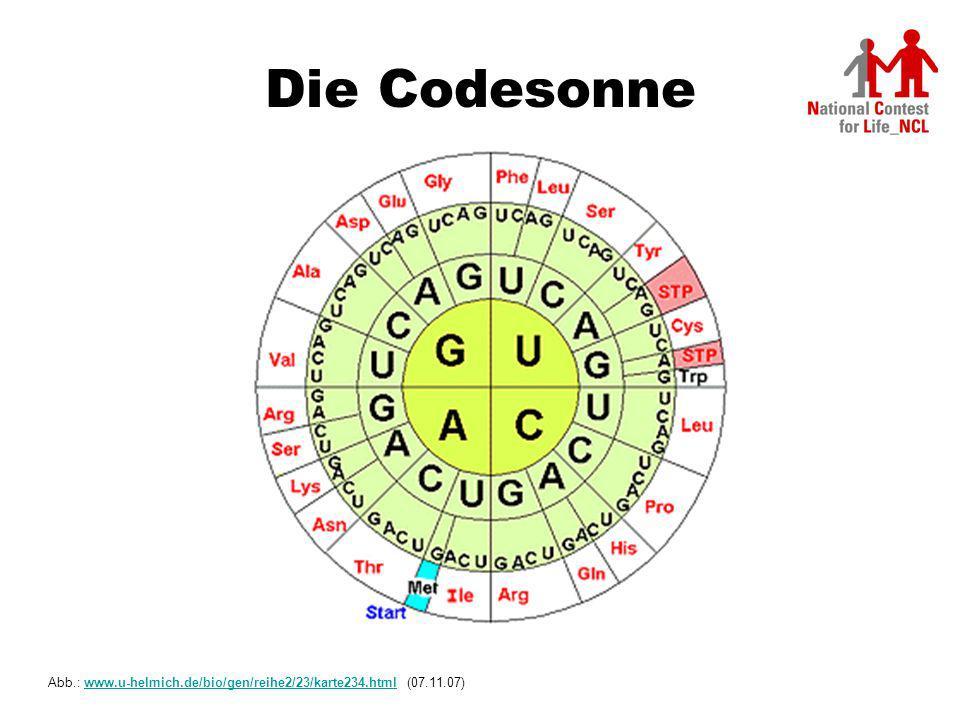 Die Codesonne Abb.: www.u-helmich.de/bio/gen/reihe2/23/karte234.html (07.11.07)