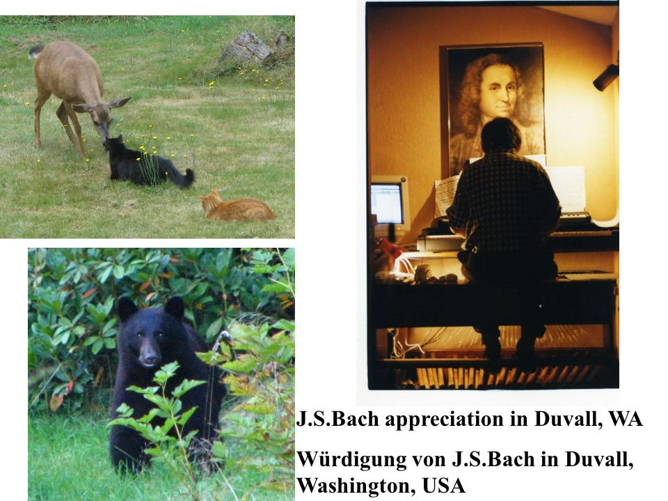 J.S.Bach appreciation in Duvall, WA