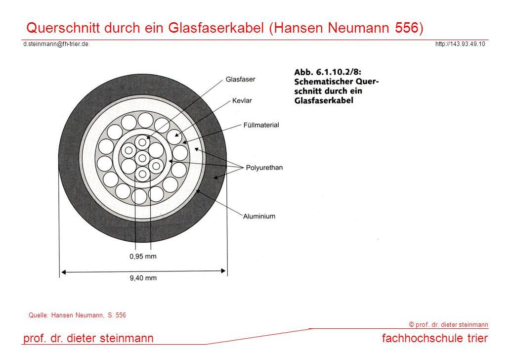 Querschnitt durch ein Glasfaserkabel (Hansen Neumann 556)
