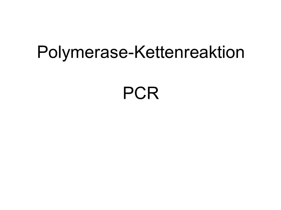Polymerase-Kettenreaktion PCR