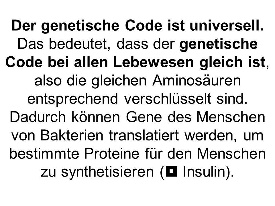 Der genetische Code ist universell