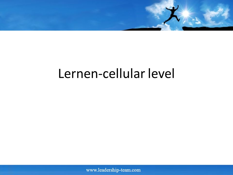 Lernen-cellular level