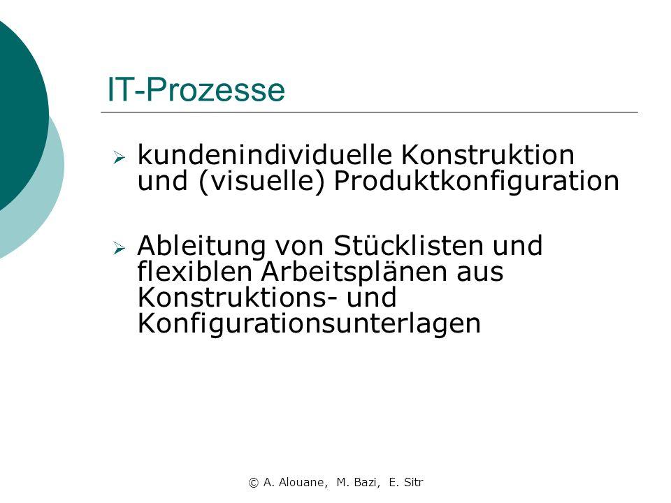 IT-Prozesse kundenindividuelle Konstruktion und (visuelle) Produktkonfiguration.