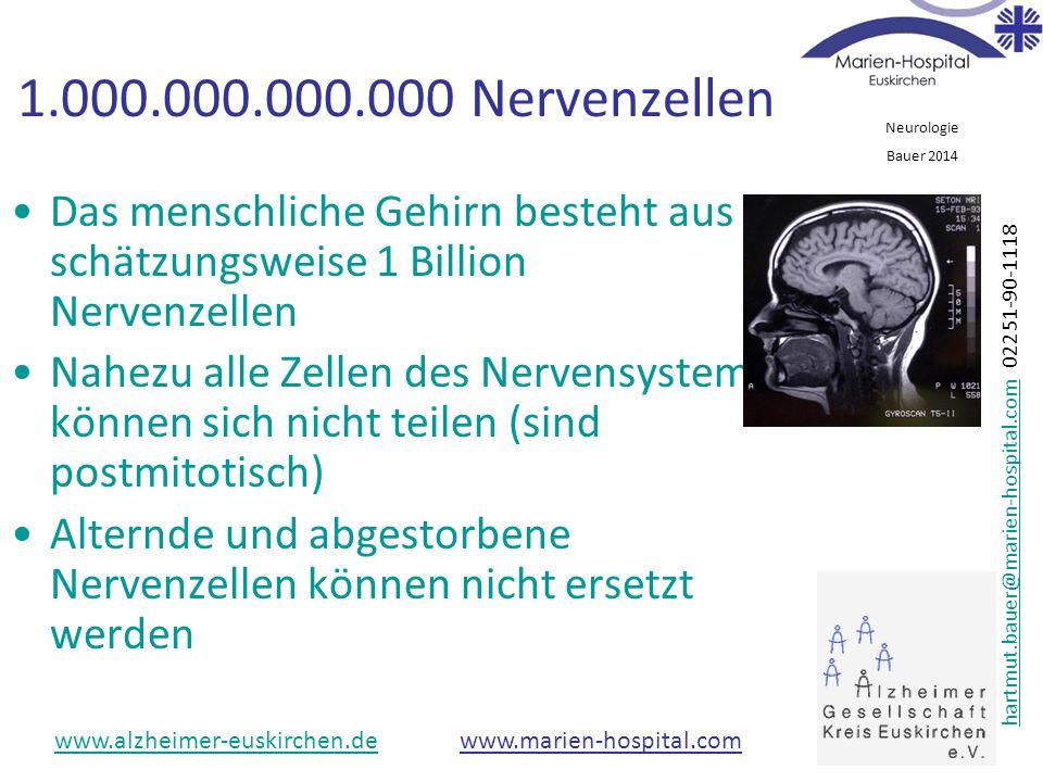 1.000.000.000.000 Nervenzellen Das menschliche Gehirn besteht aus schätzungsweise 1 Billion Nervenzellen.