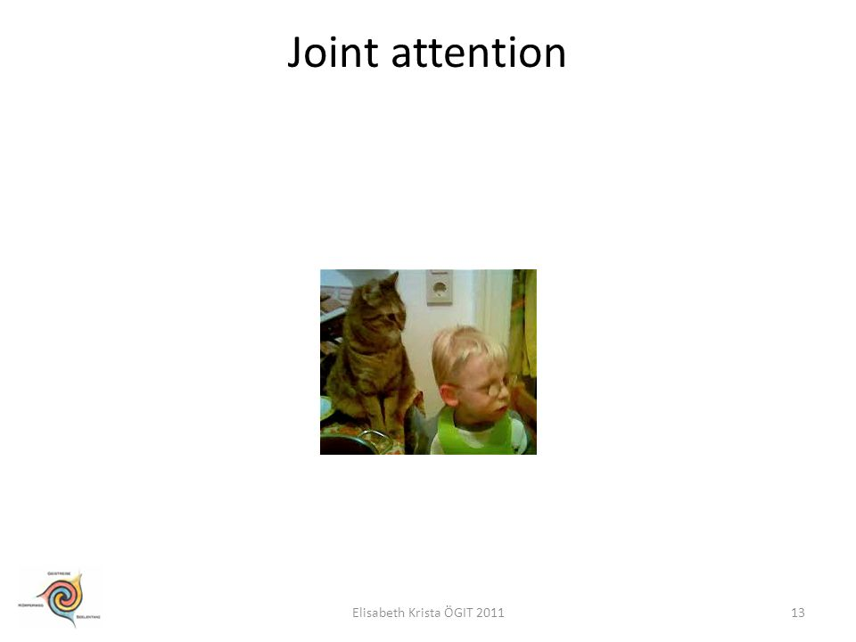 Joint attention Elisabeth Krista ÖGIT 2011
