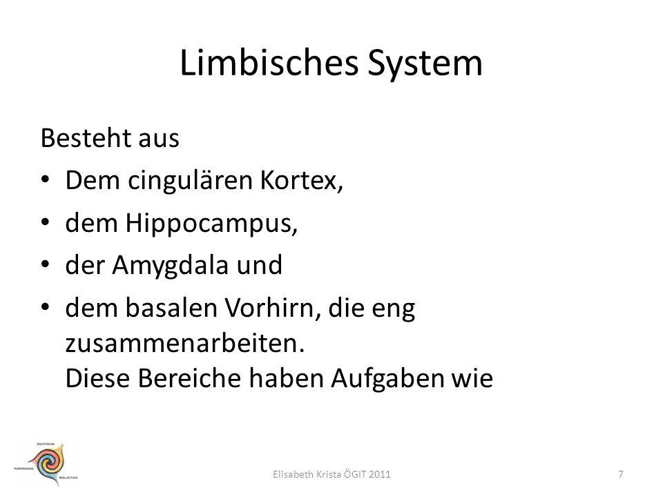 Limbisches System Besteht aus Dem cingulären Kortex, dem Hippocampus,