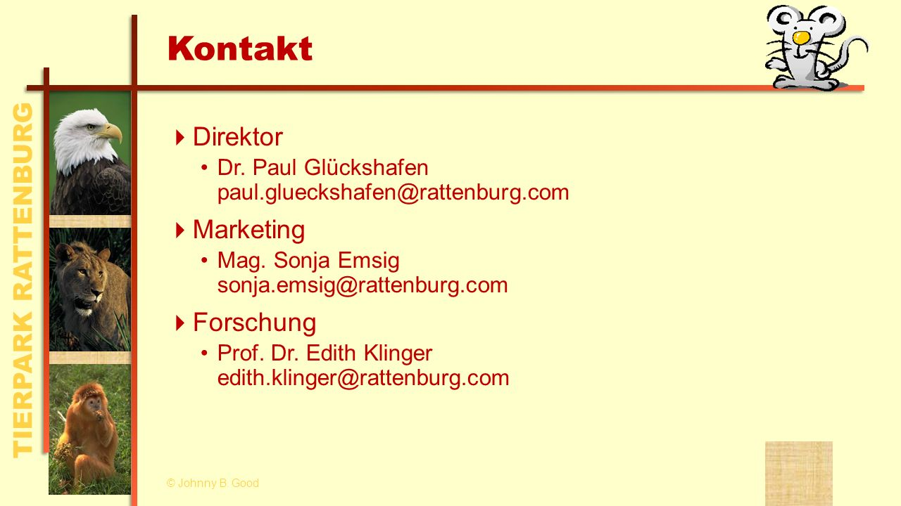 Kontakt Direktor Marketing Forschung