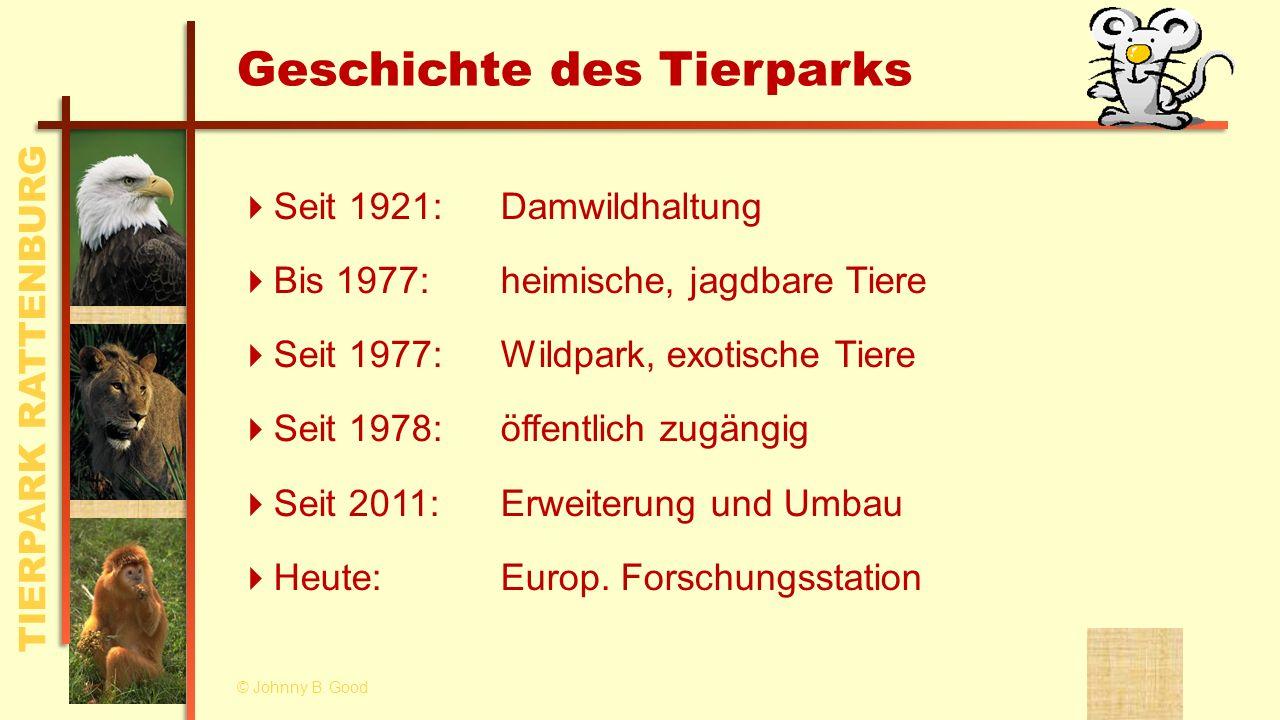 Geschichte des Tierparks