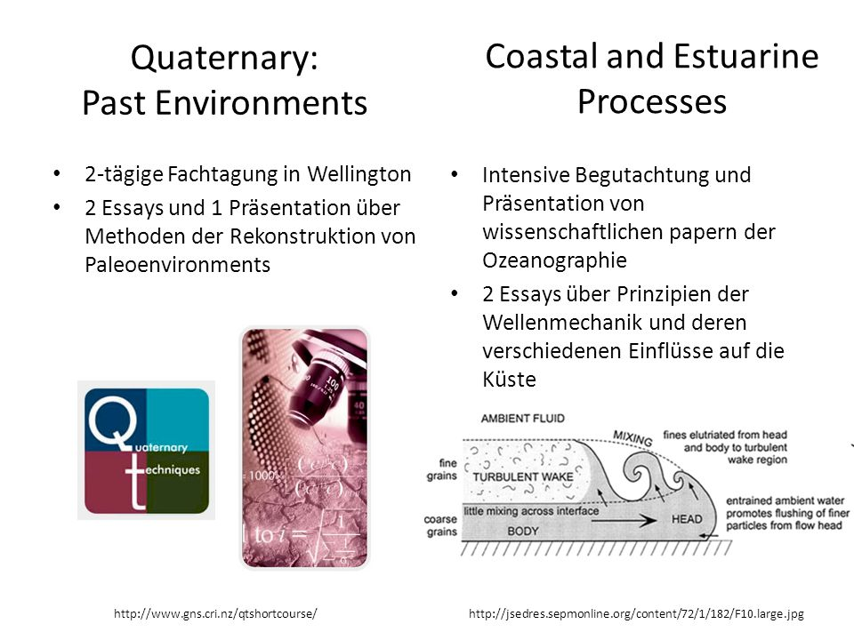 Quaternary: Past Environments