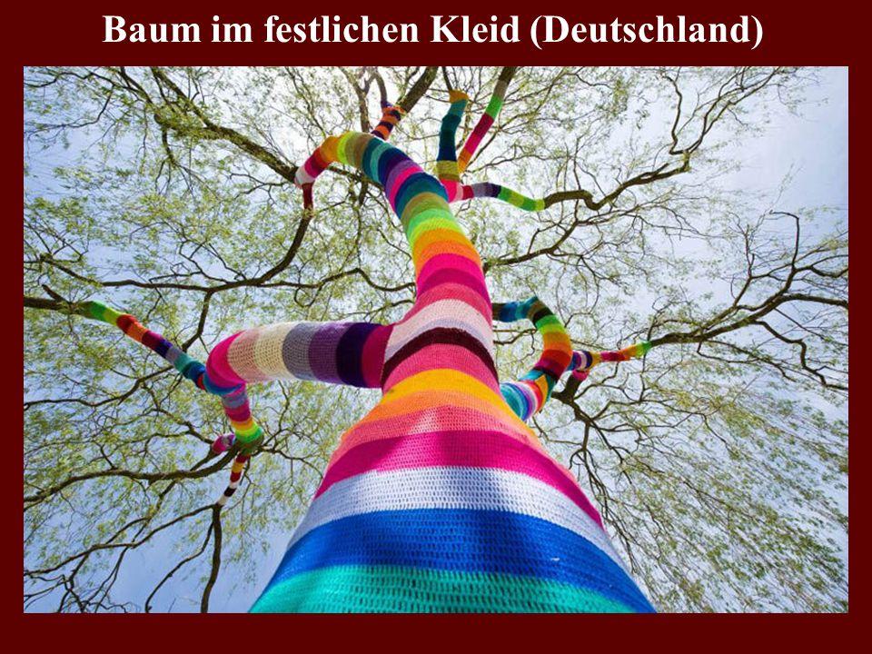 Baum im festlichen Kleid (Deutschland)