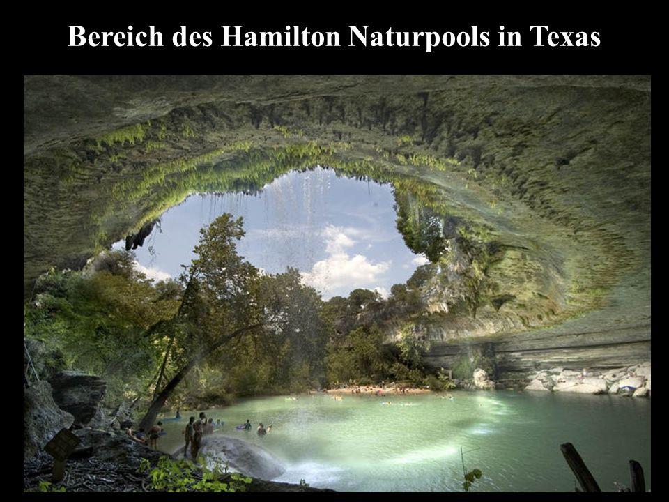 Bereich des Hamilton Naturpools in Texas