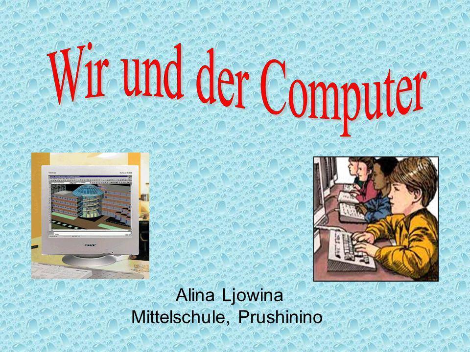 Alina Ljowina Mittelschule, Prushinino