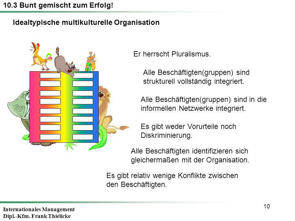 Idealtypische multikulturelle Organisation