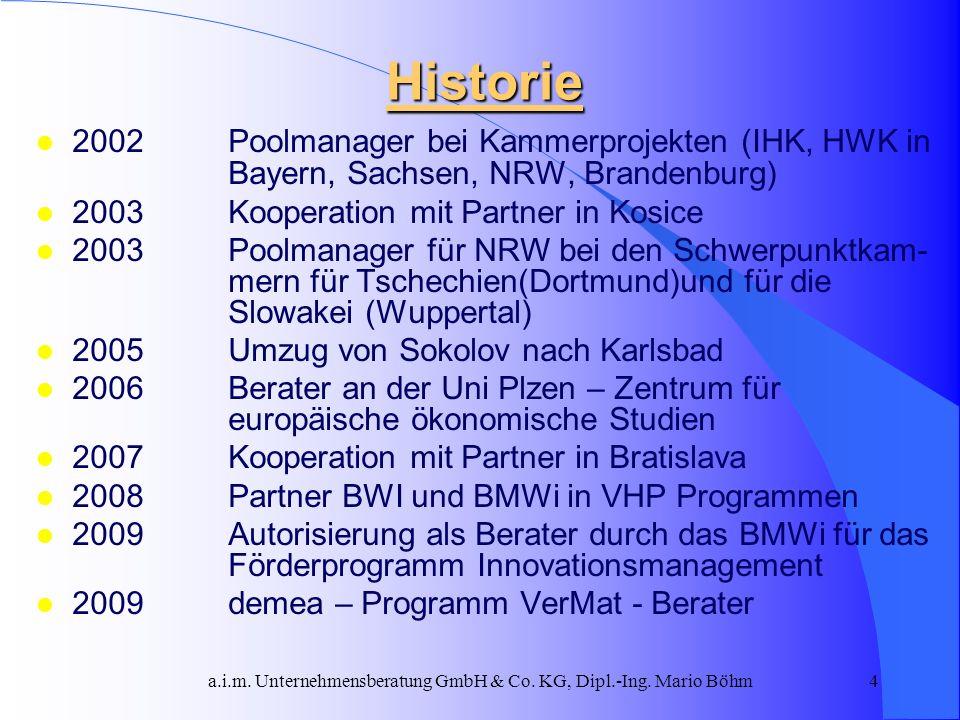 a.i.m. Unternehmensberatung GmbH & Co. KG, Dipl.-Ing. Mario Böhm