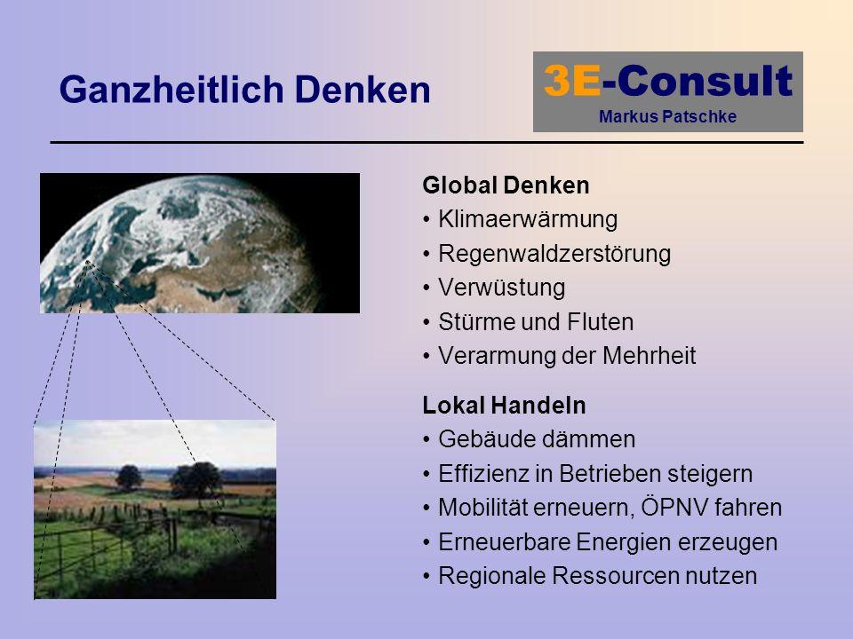 Ganzheitlich Denken Global Denken Klimaerwärmung Regenwaldzerstörung